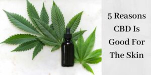 cannabis leaves with cosmetics bottle