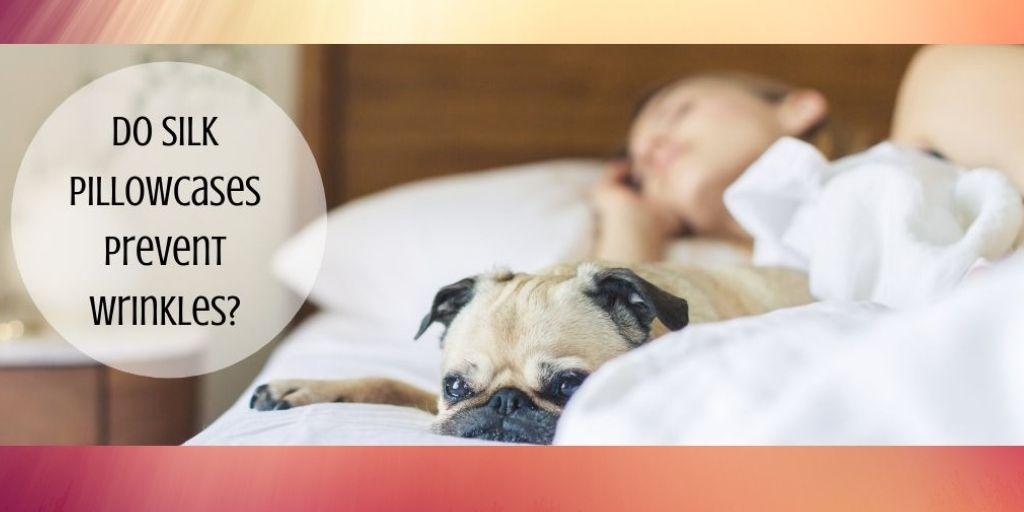 Do Silk Pillowcases Prevent Wrinkles - Girl On Bed With Bulldog